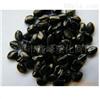 PE色母粒色母料 供应通用黑色色母 塑胶色母粒